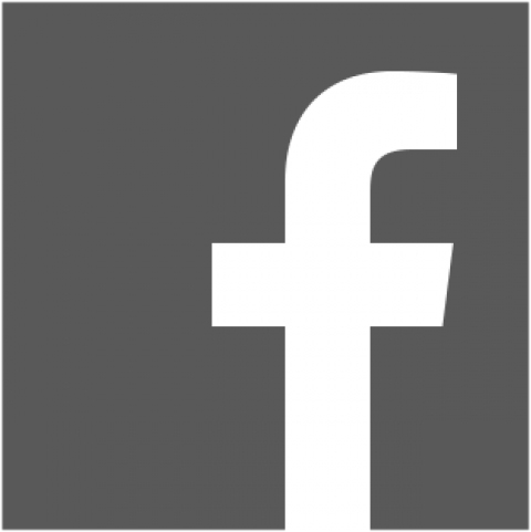 facebook_logo_grau